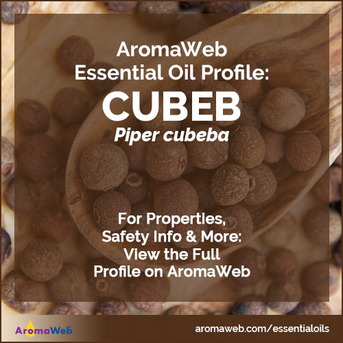 Cubeb Essential Oil Profile