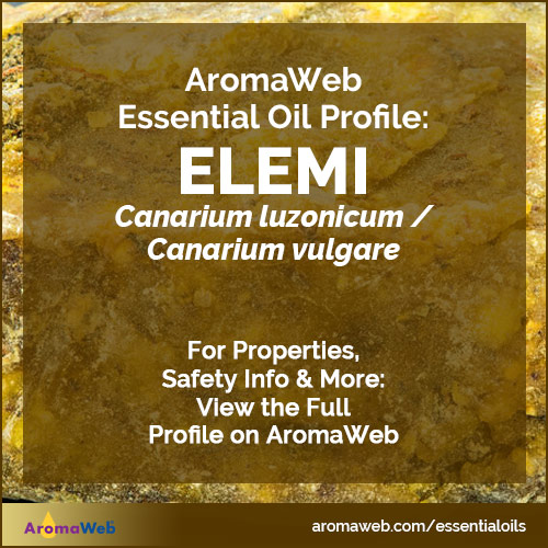 Elemi Essential Oil Profile