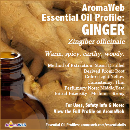 Ginger Essential Oil Profile