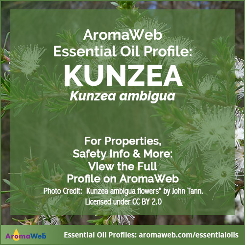 Kunzea Essential Oil Profile