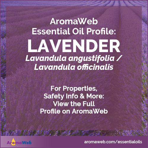 Lavender Essential Oil Profile