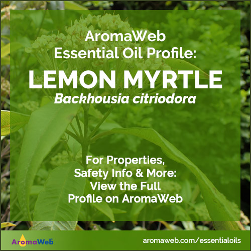 Lemon Myrtle Essential Oil Profile