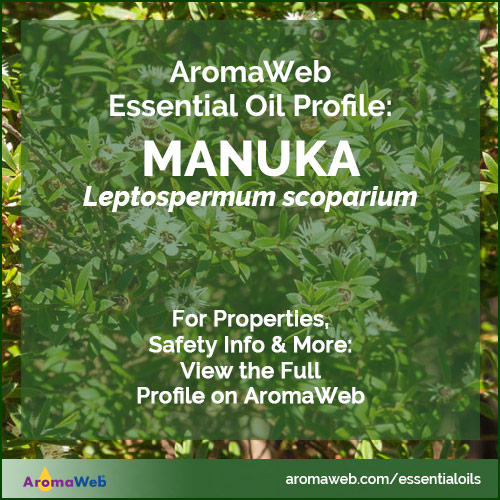 Manuka Essential Oil Profile