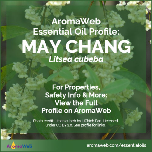 May Chang Essential Oil Profile