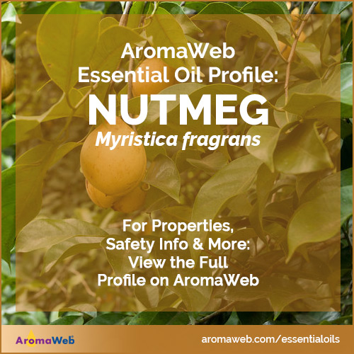 Nutmeg Essential Oil Profile
