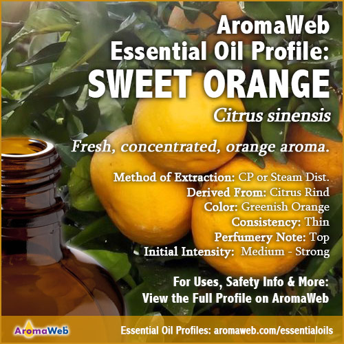 Sweet Orange Essential Oil Uses and Benefits | AromaWeb