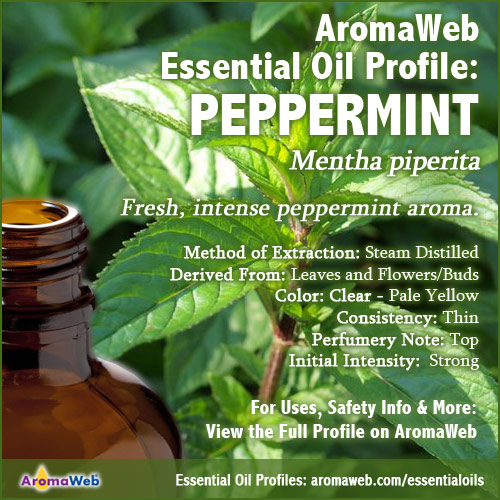 Peppermint Essential Oil Profile