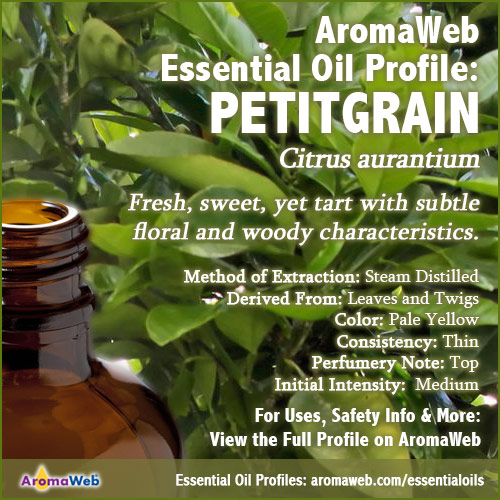 Petitgrain Essential Oil Profile