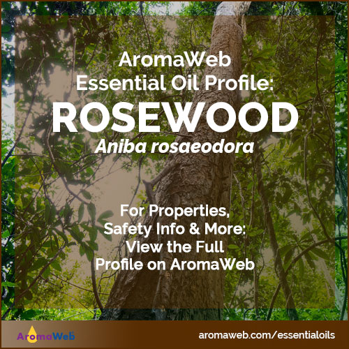 Rosewood Essential Oil Profile