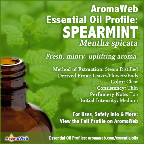 Spearmint Essential Oil Profile