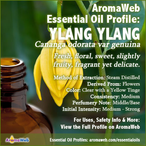 Ylang Ylang Essential Oil Profile
