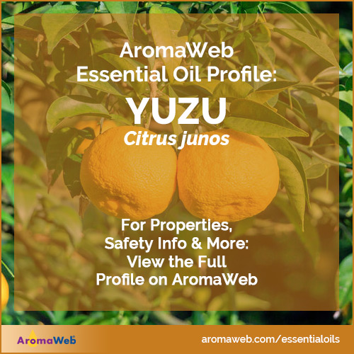 Yuzu Essential Oil Profile